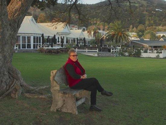 Copthorne Hotel & Resort Hokianga: Sitting under the ancient Pohutukawa Tree with hotel behind