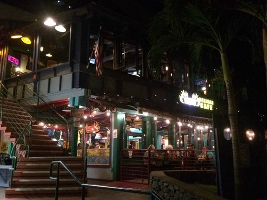 Fred's Mexican Cafe : Night time arrival