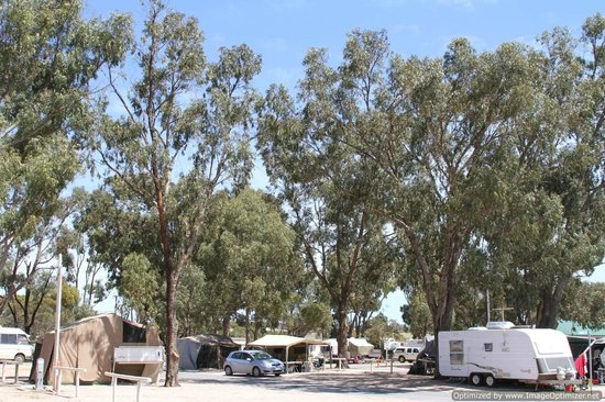 Streaky Bay Foreshore Tourist Park: Caravan and Campsites
