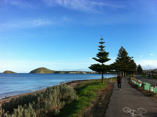 Victor Harbor Beachfront Holiday Park: Beautiful surrounds