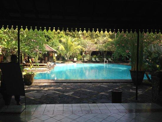 Dusun Jogja Village Inn: view from dining hall