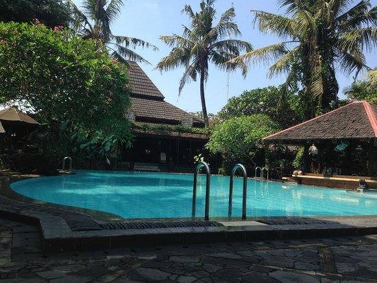 Dusun Jogja Village Inn: view from sun deck chair