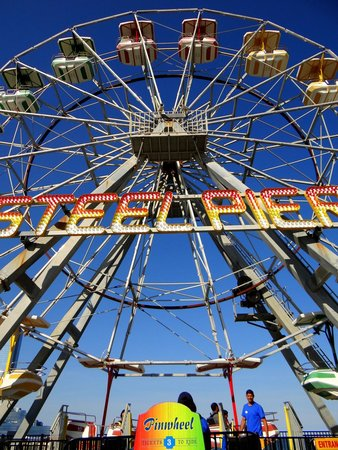 Steel Pier Amusement Park : Ferris Wheel