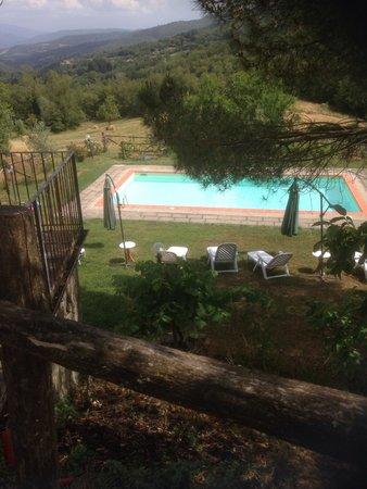 Agriturismo Podere Il Piano : La piscina