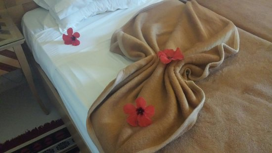 Hotel Abou Sofiane: A little suprise from the housekeeper