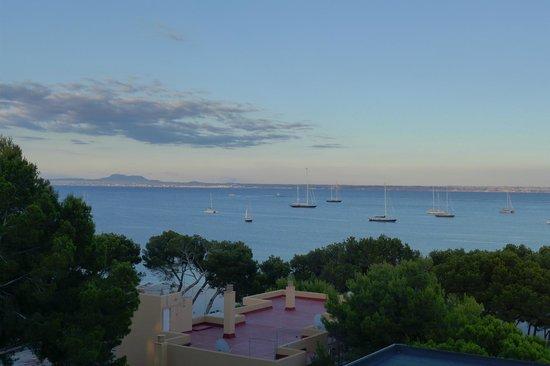 Senses Palmanova: sea view in the evening
