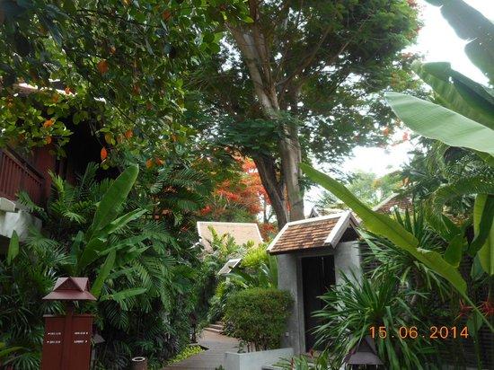 Chaweng Regent Beach Resort: Towards the Spa Villa Suite