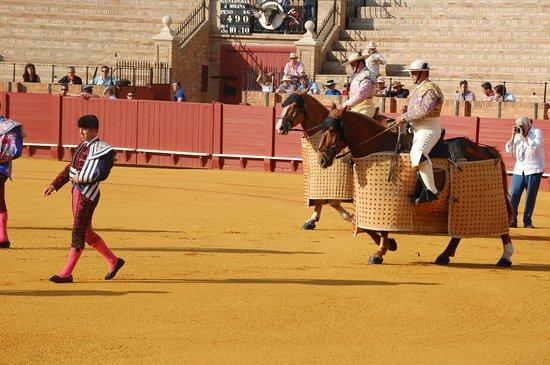 Plaza de Toros de la Maestranza : Start - entry of the matadors and their supports