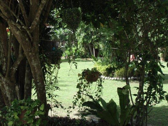 Viva Vacation Resort : Die schöne Gartenanlage