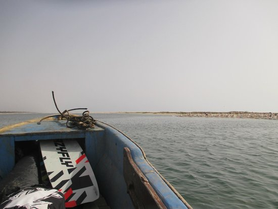 Walking On Water Kite Club : Pelicans