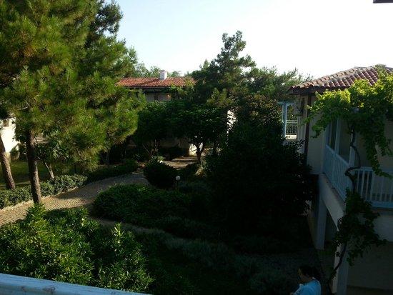 Teos Village: Giriş terasından