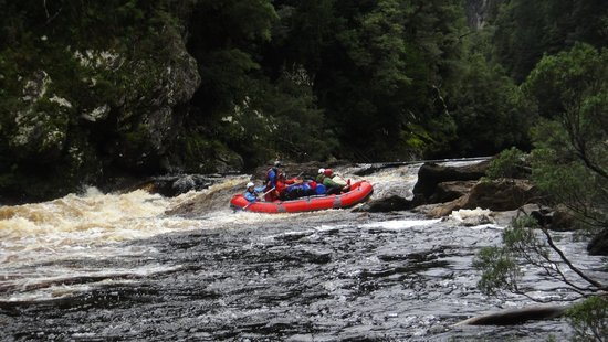 Franklin River Nature Trail: Rafting day 3