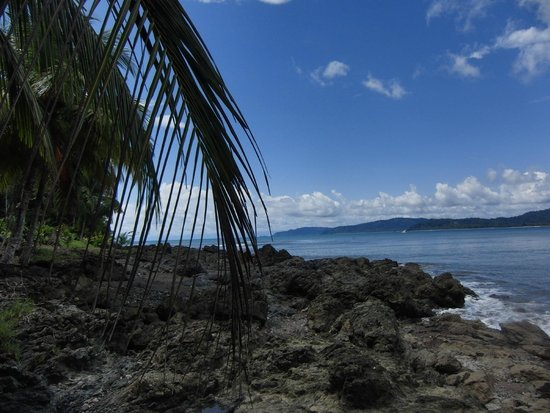 Drake Bay, كوستاريكا: Drake Bay
