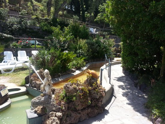 Il giardino con le vasche foto di hotel giardino delle - Hotel giardino delle ninfe e la fenice ...