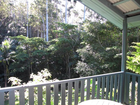 Montville Country Cabins : View from balcony