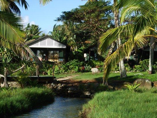 Kura's Kabanas : Kabana number 4, nearest the lagoon.