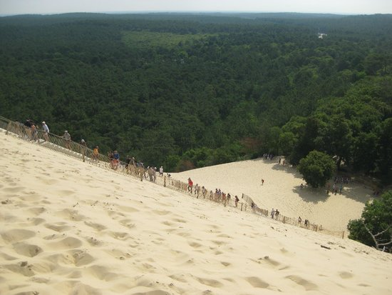dune du pilat picture of dune du pilat la teste de buch tripadvisor. Black Bedroom Furniture Sets. Home Design Ideas