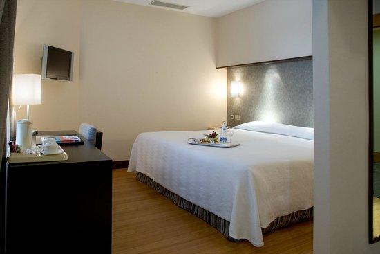 H10 Puerta de Alcala: Superior Room