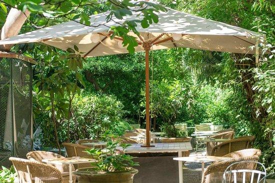 Le Jardin Du Windsor: Terrasse Jardin WI Jungle