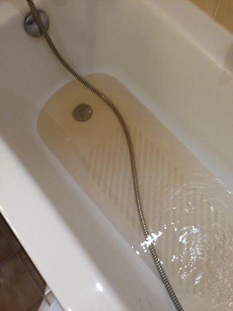 Alliance Hotel Liege - Palais des congres : Brown water from shower