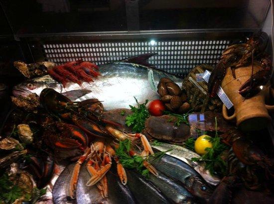 Retro Restaurant : vetrina di pesce fresco