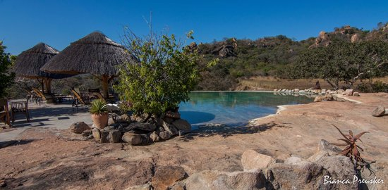 Camp Amalinda : Pool with a View