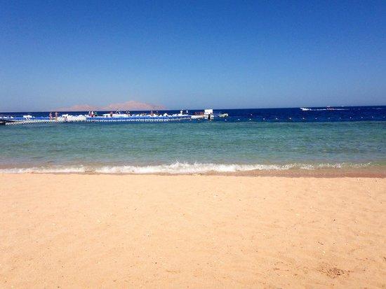Domina Coral Bay Oasis: Sharn