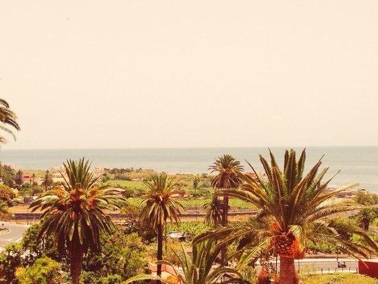 Hotel Jardin Concha: Vistas