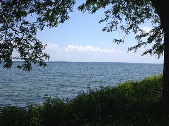Seneca Lake shoreline