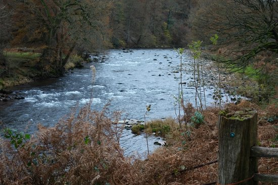 Gliffaes Country House Hotel: River Usk