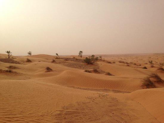 Djerba Holiday Beach: désert Sar Ghilane