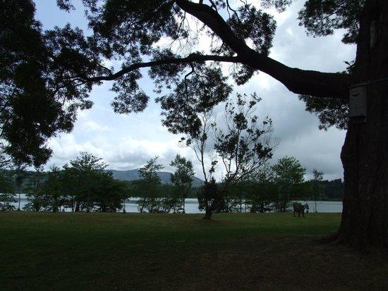 Furnas Research and Monitoring Centre: Parken intill sjön Furnas