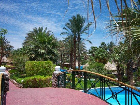Maritim Jolie Ville Golf & Resort: Мостик