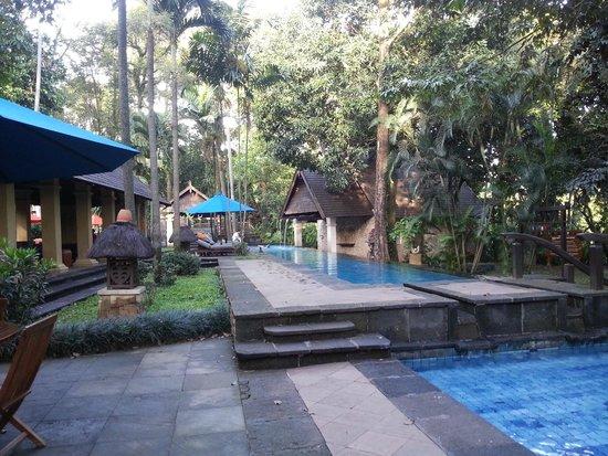 Hotel Novotel Bogor Golf Resort and Convention Center: Relaks di kolam renang