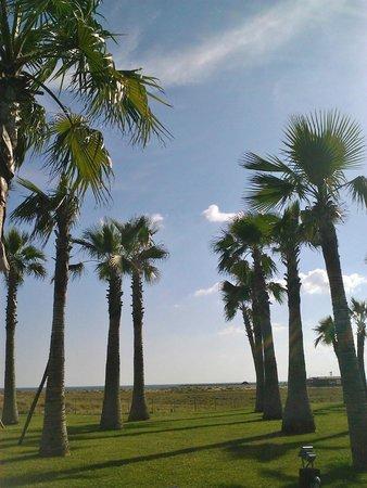 Vidamar Resort Algarve: c