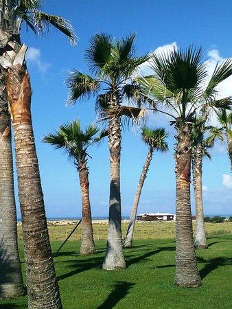 Vidamar Resort Algarve: a