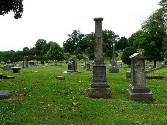 Elmwood Cemetery : Overview