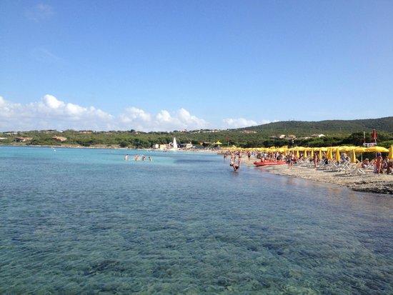 Club Esse Roccaruja : spiaggia dell'hotel dal pontile
