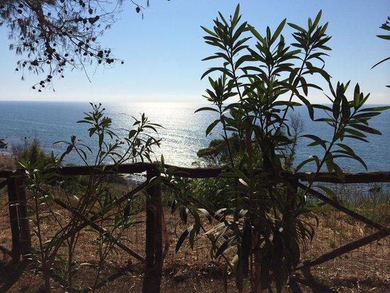 Villaggio L'Oasi: Vista del mare dal villaggio