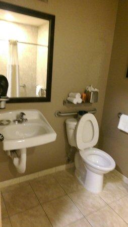 BEST WESTERN PREMIER Miami International Airport Hotel & Suites : Bathroom