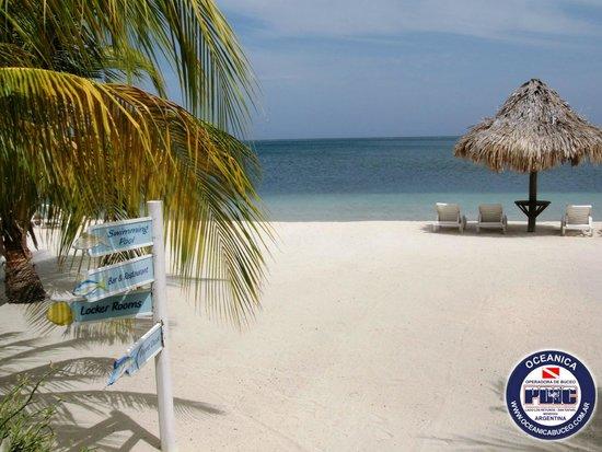Turquoise Bay Dive & Beach Resort: Playa del Resort