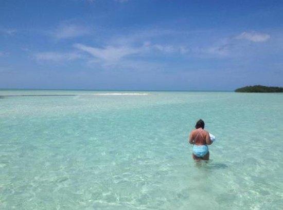 Marvin Key Sandbar Picture Of Fun In The Sun Key West
