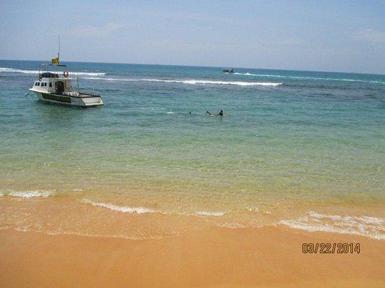 Hikkaduwa Beach Hotel: Beach