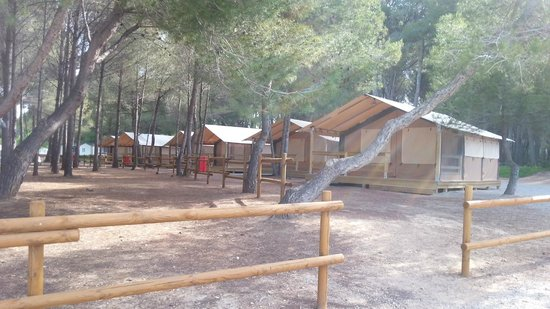 Las Palmeras Camping: Tents for rent
