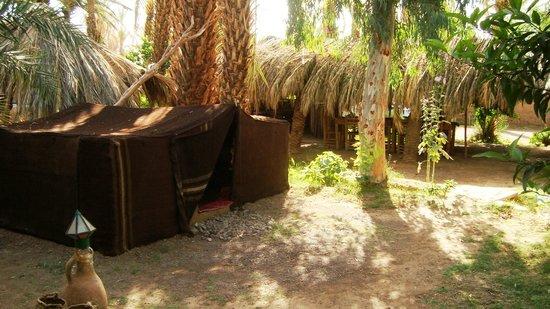 Camping Amasttou : Tente du camping