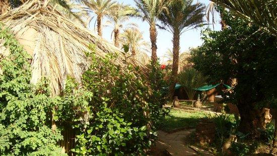 Camping Amasttou : Vue du Camping
