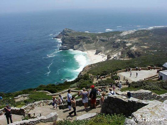 African Eagle Day Tours: cape of good hope