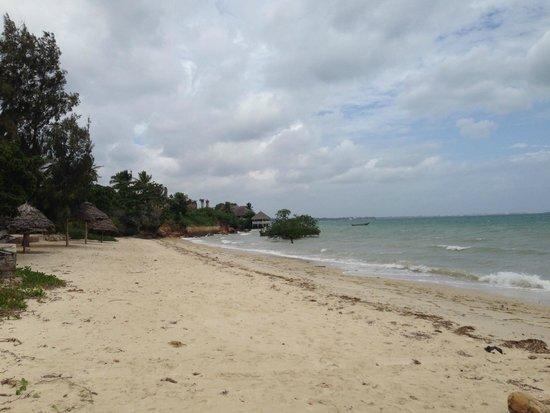 Beach next to Mangrove Lodge