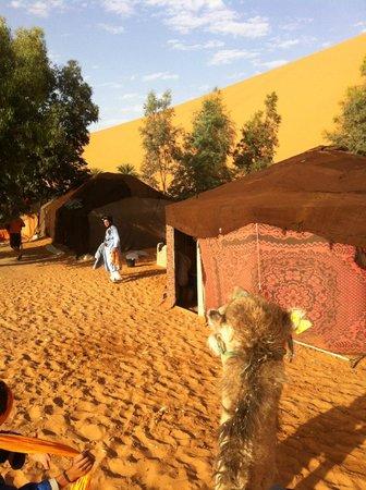 Auberge du Sud: Arrivée au Bivouac dans le désert