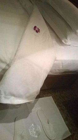 Taj Palace Hotel : As they say Turndown Service